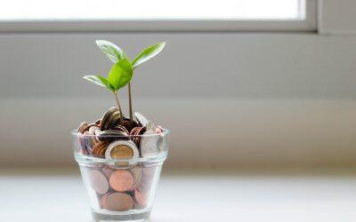 Tout savoir sur les actionnaires d'une entreprise au Québec
